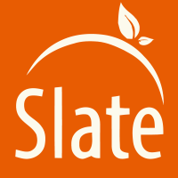 OrangeSlate_vectorized